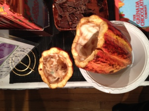 NY Chocolate Show 2012 - Cocoa pod interior