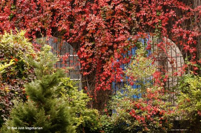 2013-10-London-Fall (5)_NJV