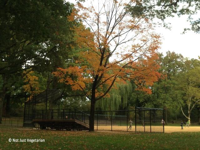 2013-10-NYC-Fall (1)_NJV